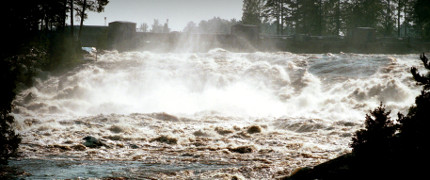 Vattenfall vill visa på alternativa miljöåtgärder