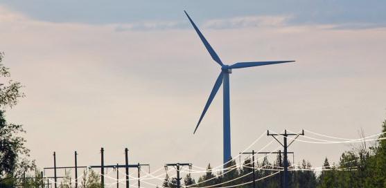 Vindkraftsinvesterare illa behandlade